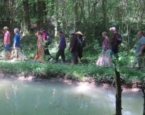 Walking Meditation, 21 Day retreat, Plum Village Monastery, France, June, 2014